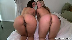 These two got asses for days and they love to shake their curves