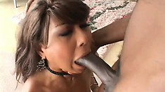 Slender Asian lady with tiny tits has a huge black dick pleasing her needy holes