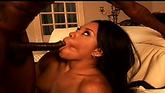 Sydnee Capri spreads her ass cheeks for Wesley Pipes' huge pole
